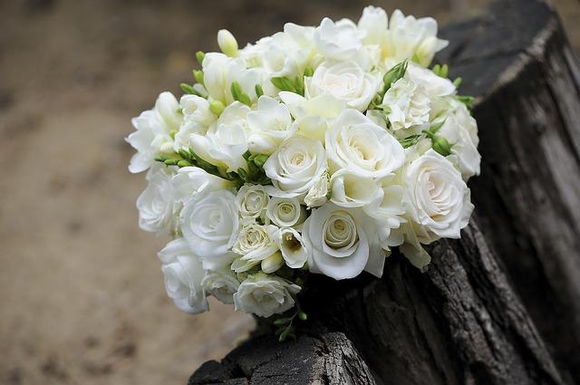 flower-393051_640