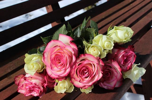 roses-1246490_640